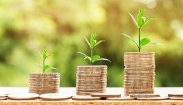 Fondos de Inversiones Socialmente Responsables (Fondos ISR)